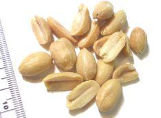 800px-Peanuts